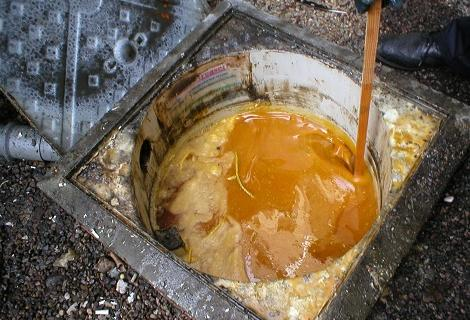 Grease in drain
